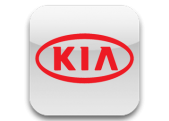 KIA Cars Interior Dash Kits - real Wood Grain, Carbon Fiber, Camouflage, Aluminum, Stainless Steel dashboard kits. Delivery Worl